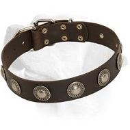 Charming Leather Collar Decorated With Vintage Medallions