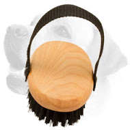 Labrador Bristle Brush for Everyday Grooming