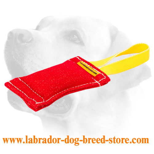 French Linen Dog Bite Tug With Handle For Labrador