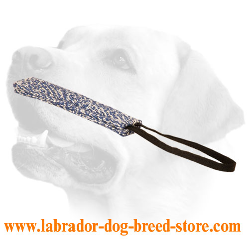 Puppy Training French Linen Dog Bite Tug For Labrador