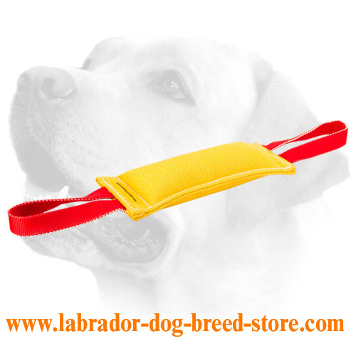 French Linen Labrador bite tug with handles