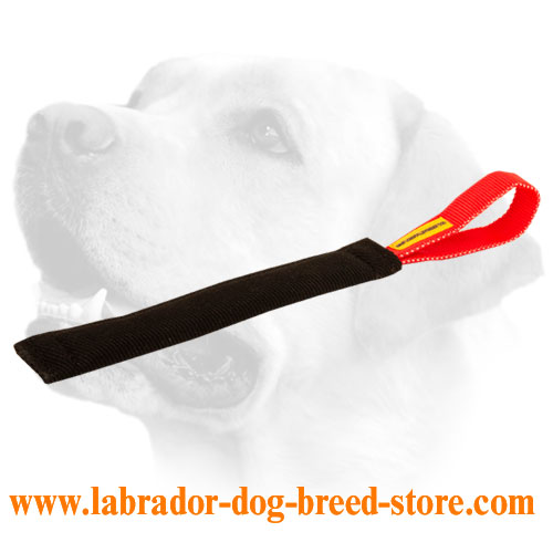 French Linen Labrador bite tug for puppies