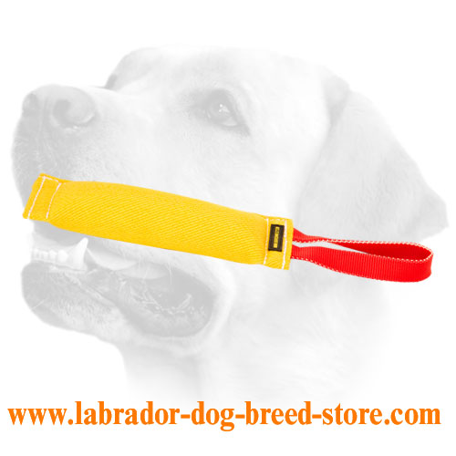 French Linen Dog Bite Tug For Labrador Training