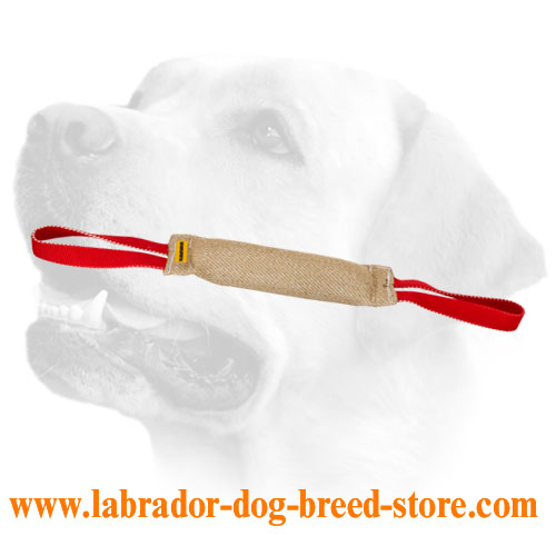 Stitched Jute Bite Tug For Labrador