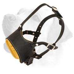 High Quality Soft Leather Labrador Muzzle for Training