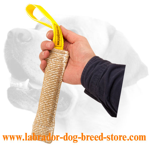 Jute Labrador bite tug for puppies