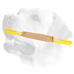 Quality Labrador training tug of leather with two handles
