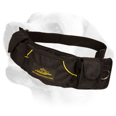 Labrador Nylon Pouch with Adjustable Belt