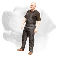 Protection scratch pants for Labrador     training