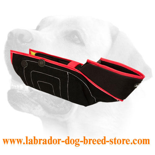 French Linen Labrador Sleeve for Bite Training