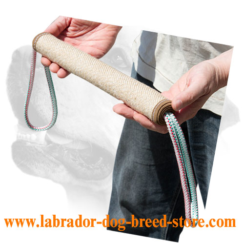 Strong jute Labrador bite training roll