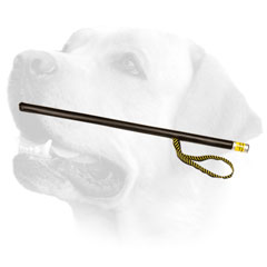 Quality Labrador training stick     with loop