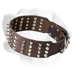 Leather Labrador collar with nickel decoration