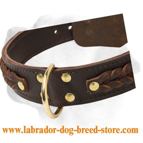 Collar For Labrador [C55##1026 Braided 2Ply Leather Collar] : Labrador ...