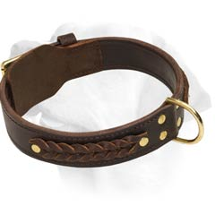 Two Ply Braided Leather Collar For Labrador