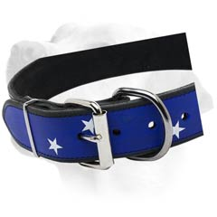 Buckled Handpainted Collar For Labrador