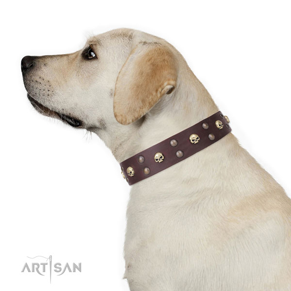 Basic training embellished dog collar of strong natural leather