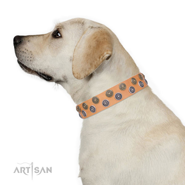 Comfortable wearing adorned dog collar of durable material