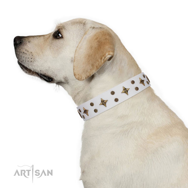Handy use embellished dog collar of high quality material