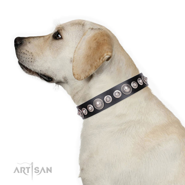 Impressive studded genuine leather dog collar for handy use