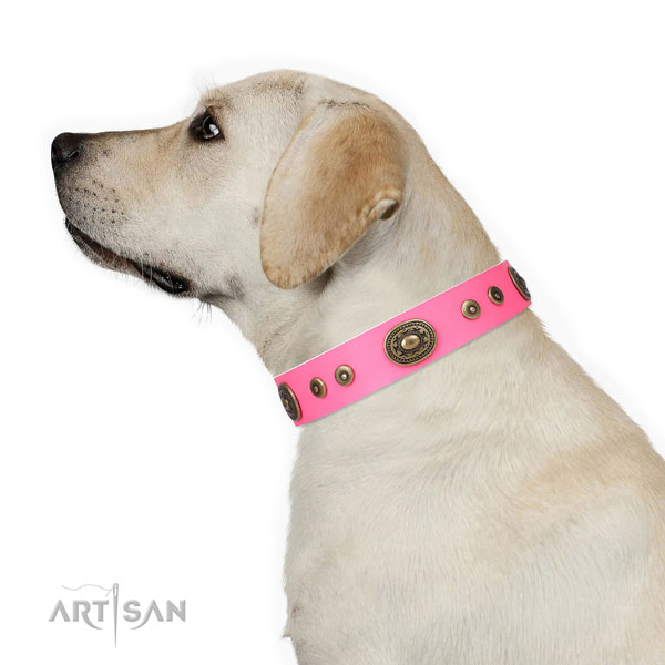 Exquisite decorated genuine leather dog collar for easy wearing