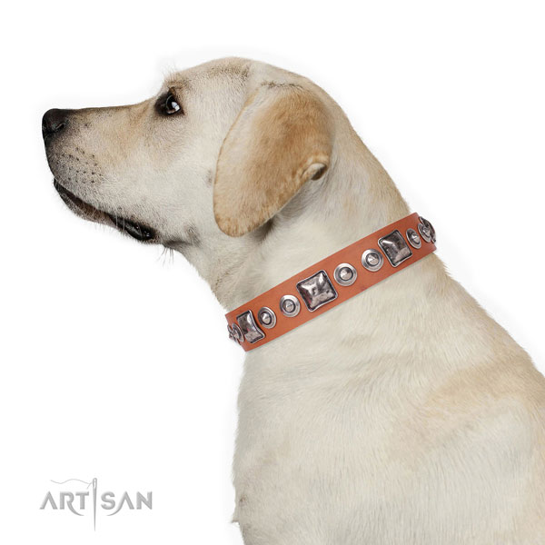 Fashionable adorned natural leather dog collar for comfortable wearing
