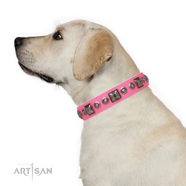 Exquisite decorated natural leather dog collar for daily walking