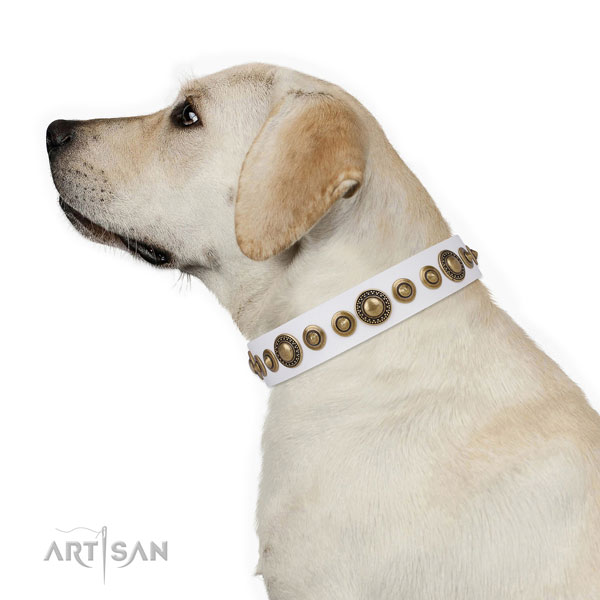 Corrosion resistant buckle and D-ring on leather dog collar for stylish walks