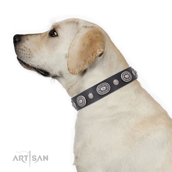 Reliable buckle and D-ring on full grain leather dog collar for stylish walks