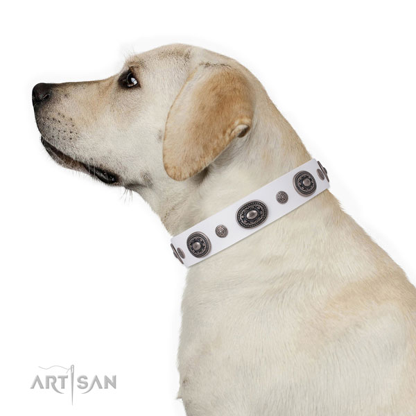 Genuine leather dog collar with corrosion resistant buckle and D-ring for easy wearing
