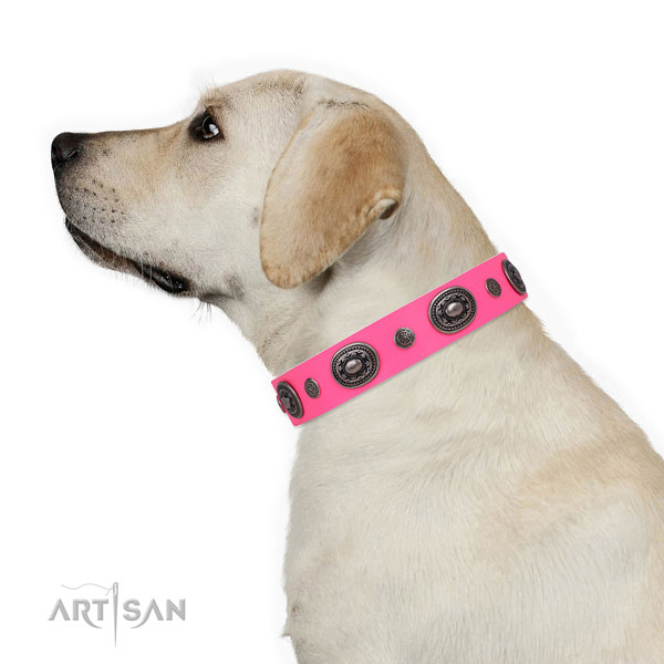 Natural leather dog collar with corrosion resistant buckle and D-ring for comfy wearing