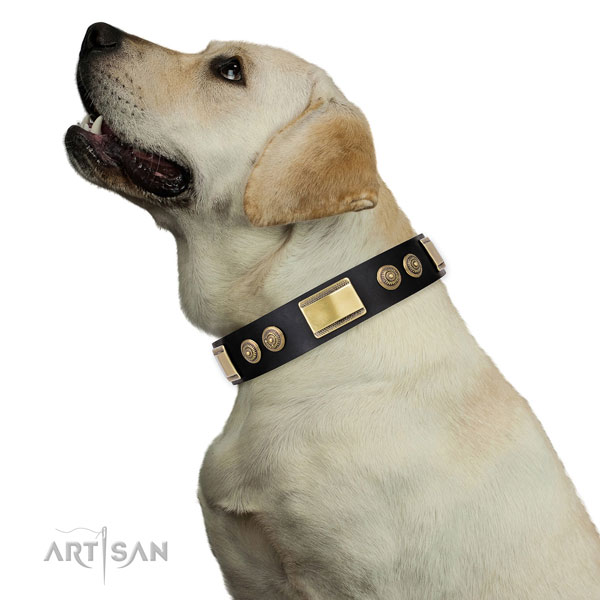 Inimitable adornments on handy use dog collar