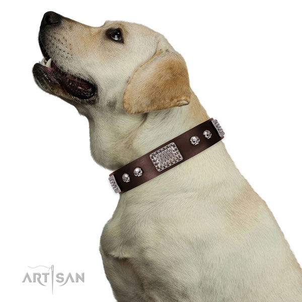 Stylish full grain genuine leather collar for your lovely dog