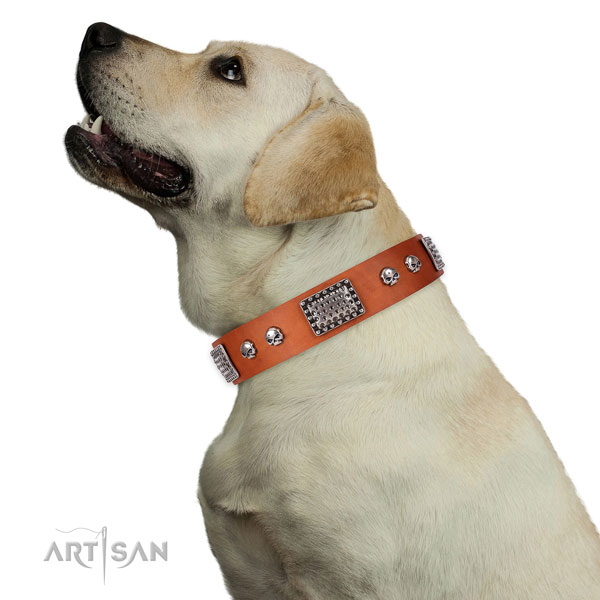 Comfortable natural genuine leather collar for your impressive canine