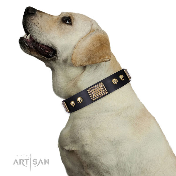 Strong buckle on natural genuine leather dog collar for everyday walking