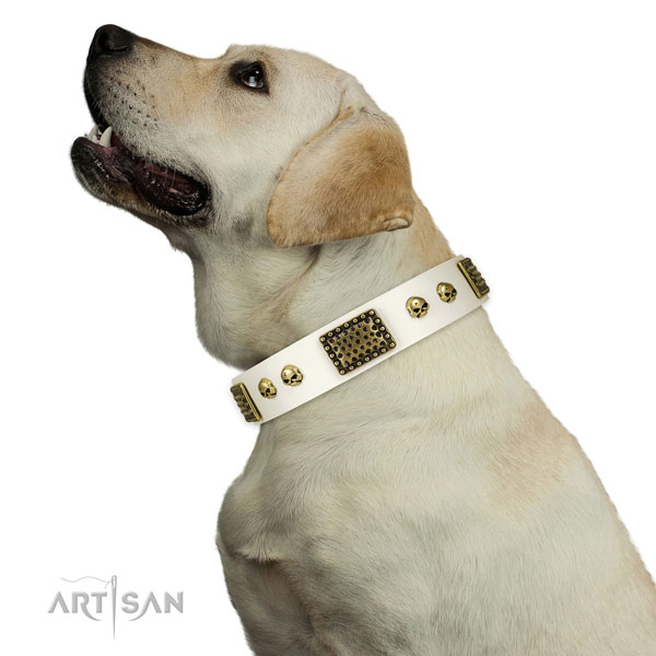 Rust-proof buckle on full grain natural leather dog collar for basic training