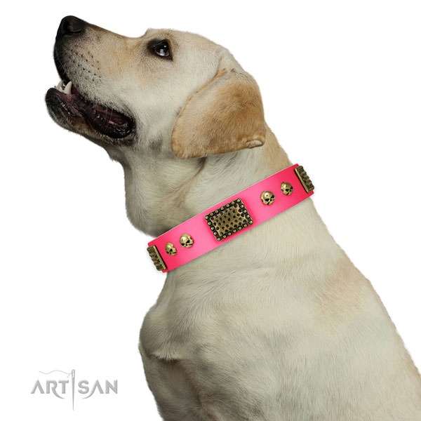 Strong traditional buckle on natural leather dog collar for easy wearing