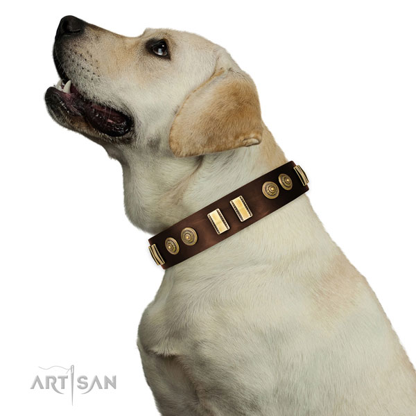 Reliable hardware on full grain natural leather dog collar for daily walking