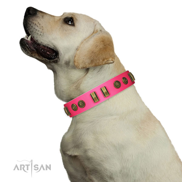 Easy wearing dog collar of natural leather with unique studs