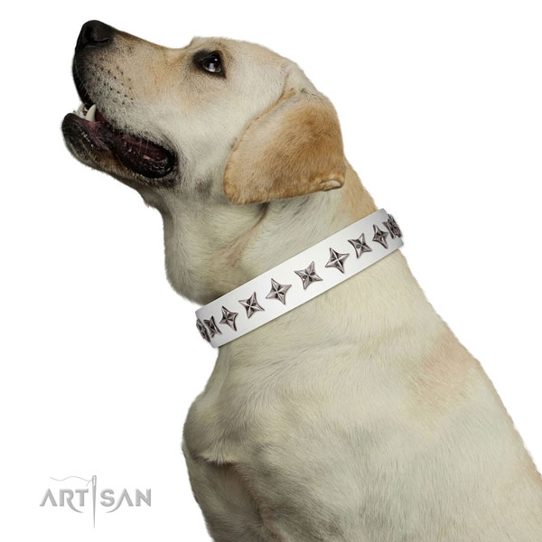 Reliable full grain genuine leather dog collar with significant studs