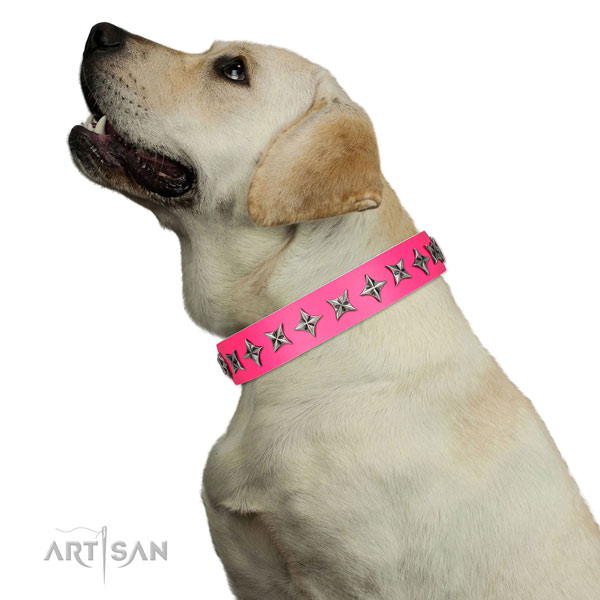 Finest quality full grain leather dog collar with exceptional decorations