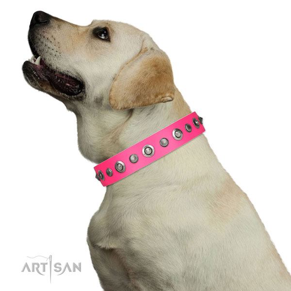 Full grain natural leather collar with durable buckle for your beautiful canine