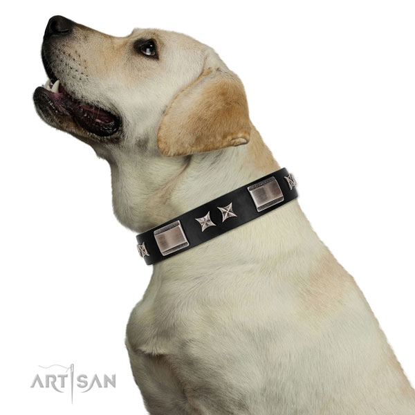Daily use top rate full grain genuine leather dog collar with decorations