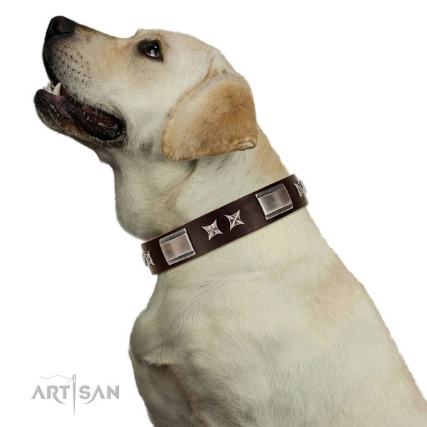 Unique collar of genuine leather for your attractive doggie