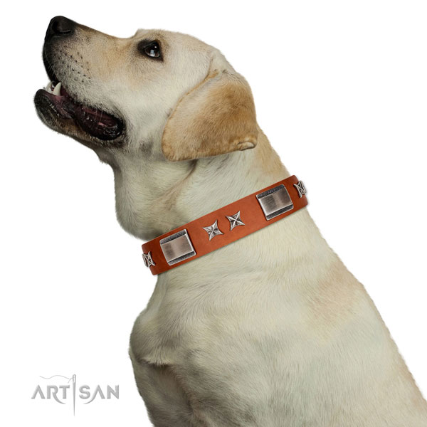 Everyday use gentle to touch full grain natural leather dog collar with decorations