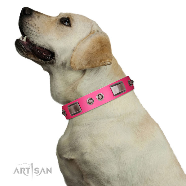 Easy to adjust full grain leather dog collar with adornments