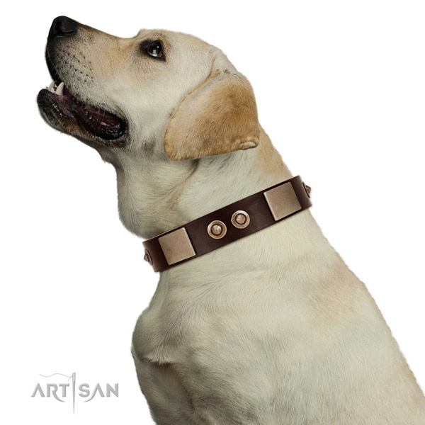 Corrosion resistant buckle on leather dog collar for handy use