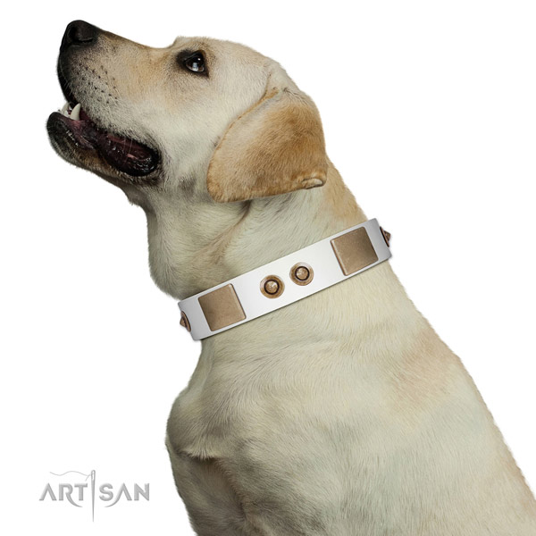 Comfortable wearing dog collar of natural leather with top notch decorations