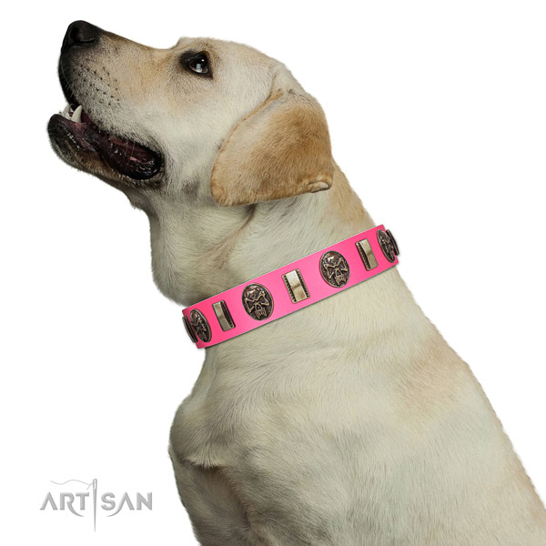 Rust resistant D-ring on full grain leather dog collar for easy wearing