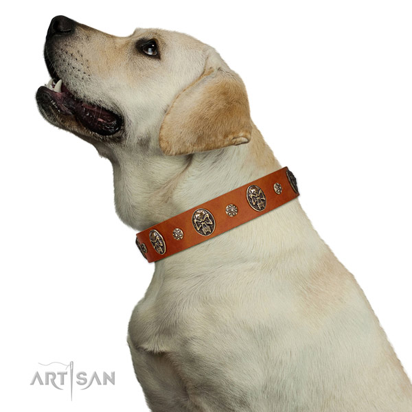 Comfortable wearing dog collar of natural leather with fashionable studs
